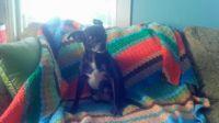Funky Blanket