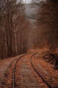 Autumn rail ride