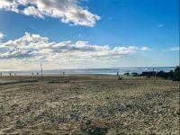 Mid-Winter Beach Stroll