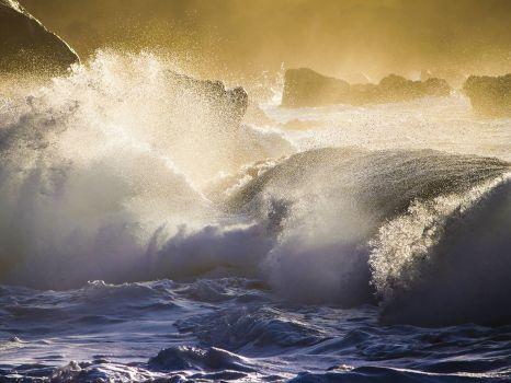 Oahu Splash
