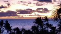 Hawaii - Susie&George