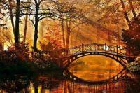Les reflets de l'automne