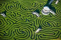 birds-eye-view-maze