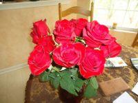 Roses from Dan