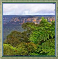 In the Blue Mountains.