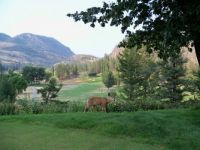 Another Beautiful day at Twin Lakes Golf Course, Kaleden, B.C.