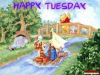 Happy Tuesday to all