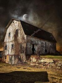 Ontario NY Barns / Michael P Malley
