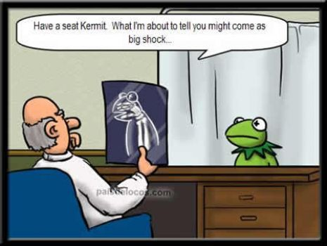 The truth about Kermit.