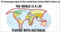 The world is a cat