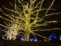 Longwood Gardens, PA