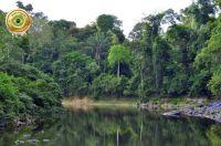 Brasil - Amazônia 600