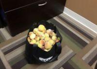 Peaches Gift