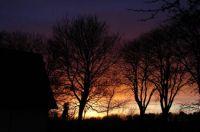 evening sun -1