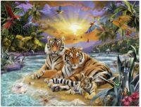 famille-de-tigres-au-coucher-du-solei