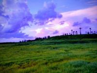 Robinson Preserve sunset, Bradenton FL