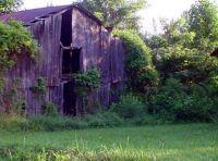 morning at the old barn door