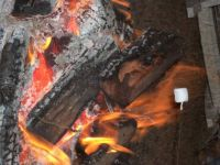 Nice warm campfire!