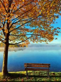 Herbst-Idylle am See