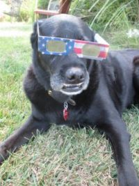Lucy Waiting For The Eclipse