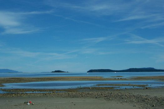 Royston Beach, Vancouver Is. B.C.