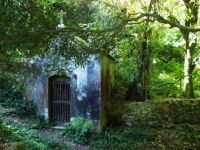 Tiny chapel in the forest in Portugal