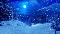 Winter night (large)