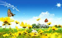 Beautiful Spring Scene