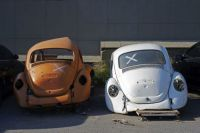 Two Old Beetle
