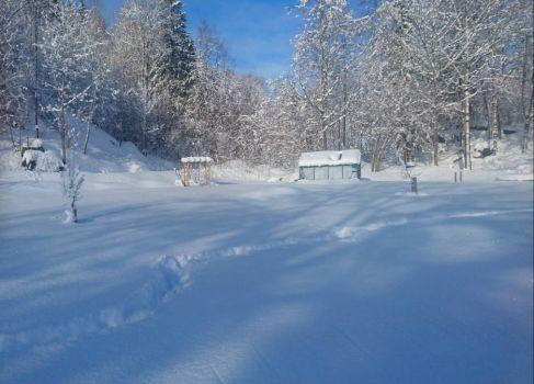 My greenhouse in wintertime