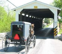 Covered Bridge and Amish Buggy