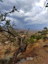 Storm at Sunset Point Park,  Arizona