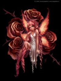Pink Rose Fairy Girl