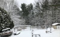 Winters First Snowfall