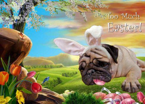 Easter_Dog