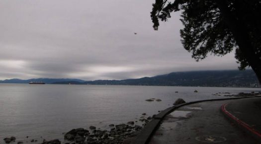A Rainy Day in Stanley Park