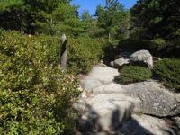 Hike time! Acadia National Park
