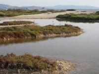 Little salt lakes towards Le Saline beach, Stintino, Sardinia, Italy