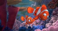 Finding Nemo #5