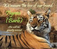 RIP - Tigress Barb