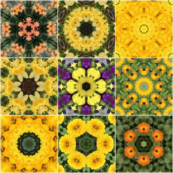 kaleidoscope 70 yellow mix small