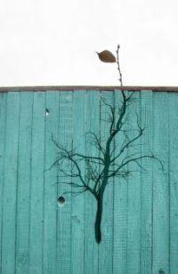 tree fence