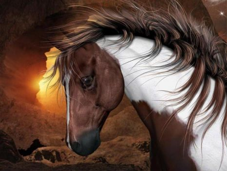 Horses_wallpapers_195