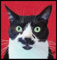 Cats I Know - Salvador - Portrait Painting