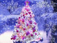 Beautiful-Christmas-Tree-christmas-27617948-1024-768