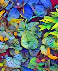 Veined Leaves