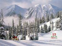 Here comes Santa Claus ... Ho, Ho, Ho!