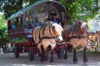 paarden en huifkar