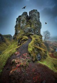 The Fairy Glen -  -