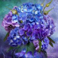 Hydrangea  Bouquet for Ladywil